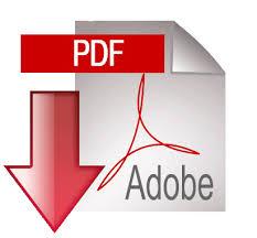 Ver CV en formato PDF
